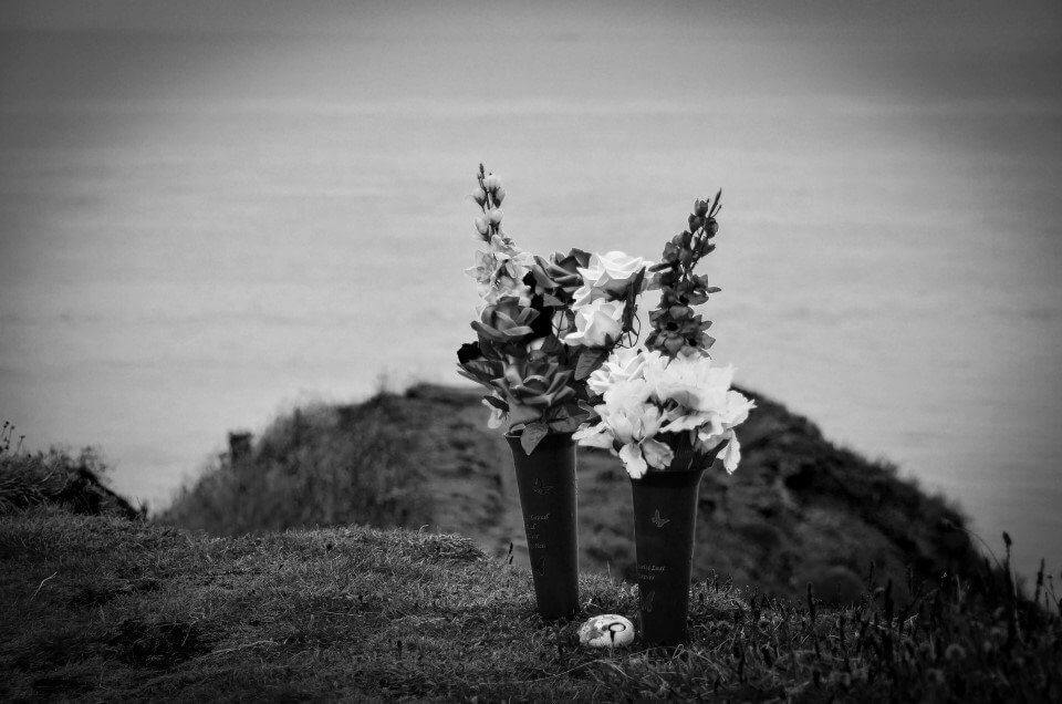 two vases of flowers sitting on a hill in front of the ocean