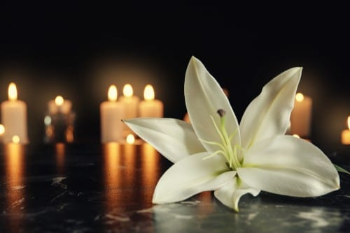 white flowers and candles